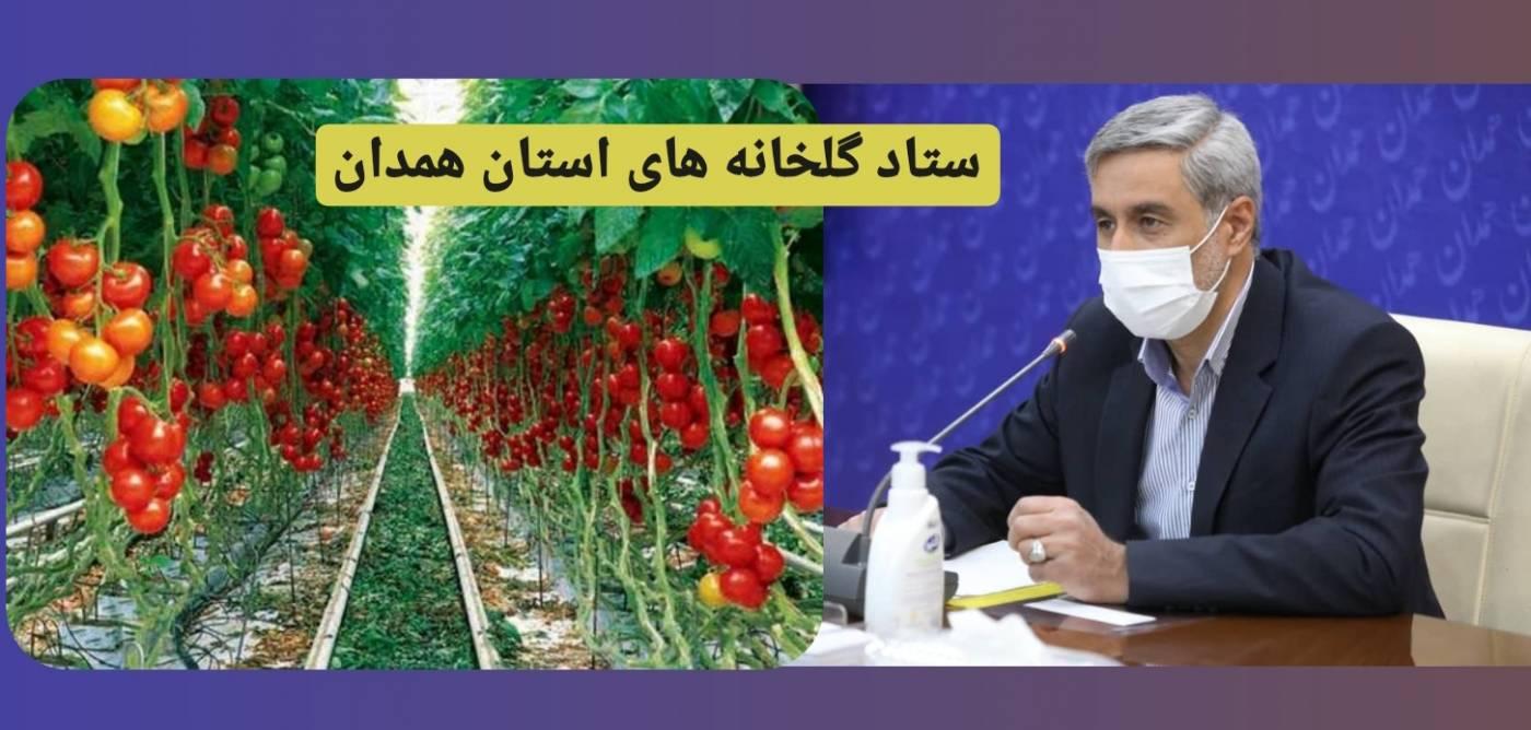 استاندار همدان: توسعه کشت گلخانهای گامی برای تحقق اقتصاد مقاومتی است